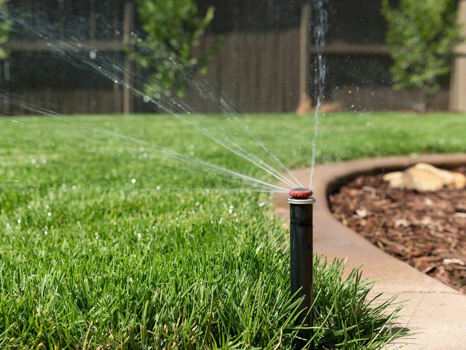 EEEXX3 Sprinkler head taken from a low wide angle spraying water onto a green backyard lawn in Sacramento, California.